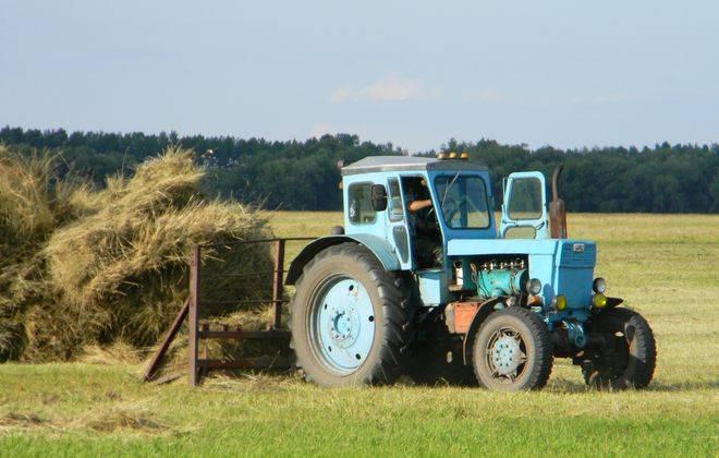 трактор т 40 в поле